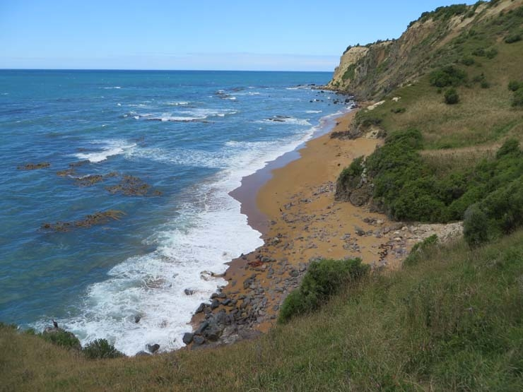 The view from the cliff in Moeraki